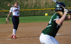 Softball roundups