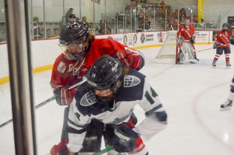 Women's Hockey: RMU vs Mercyhurst