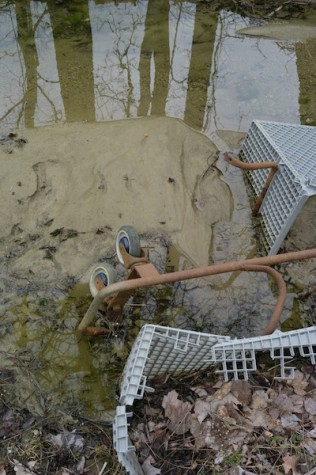 4.Two remnant portions carts that can be seen sinking into the muck and water