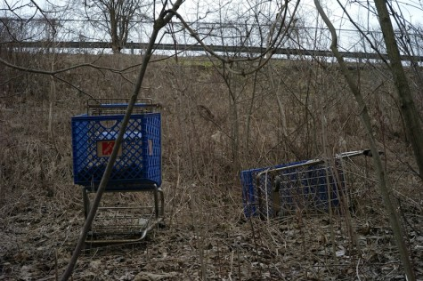 Climbing up towards the Kmart parking lot, two vibrant blue carts, one with only the wheels sunken down, are stagnant part way down the hill