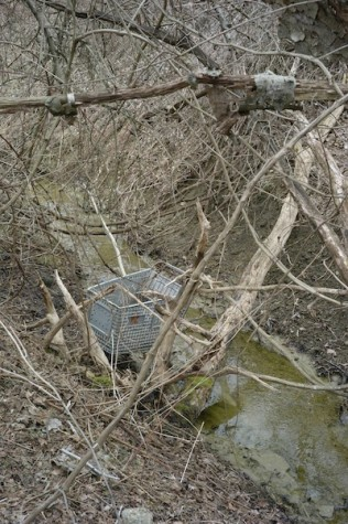 An older model cart sinking in a deep section of the stream