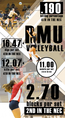 volleyball infographic.png