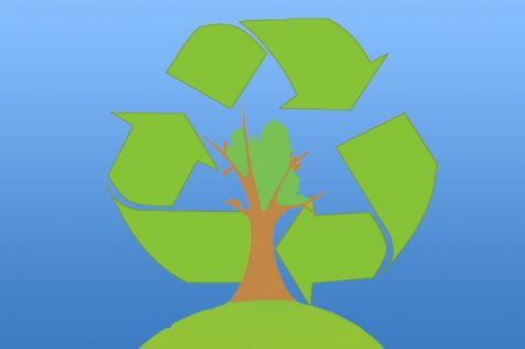 The importance of environmental conservation
