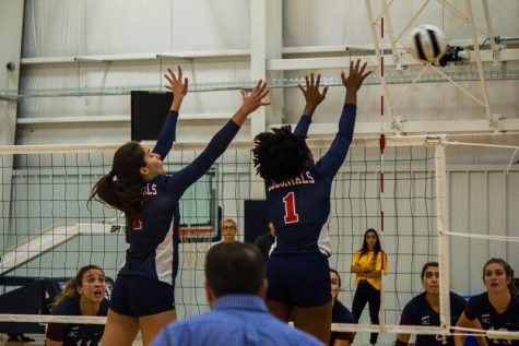 Colonials battle the Terriers in a four-set win