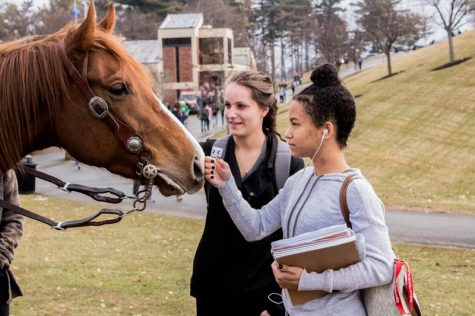 Internet-famous horse and owner visit RMU