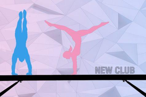Club starts for coed gymnasts