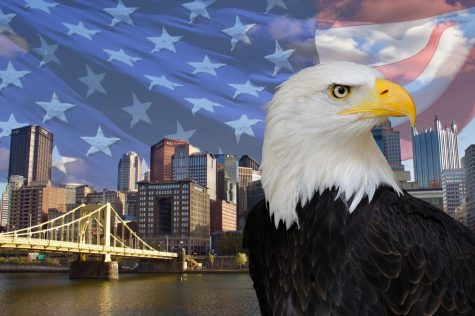 Third bald eagle hatches in Pittsburgh nest