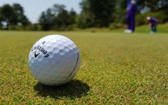 Golf ball near green. Image Credit: <a href=