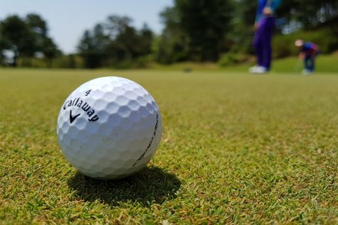 Golf ball near green. Image Credit: Golfible
