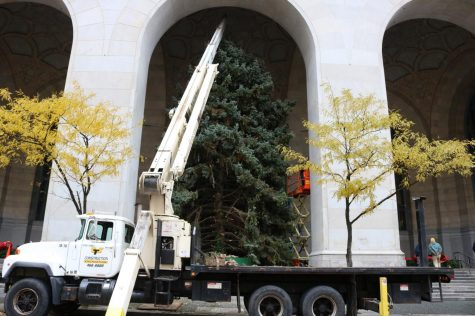 City-County Building Pittsburgh Christmas Tree