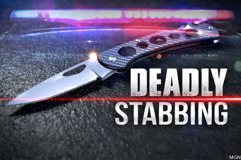 Man dies in Moon Twp. stabbing