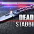 Man dies in Moon Twp. stabbing