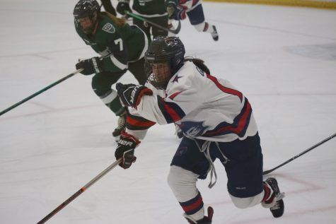 Women's hockey falls in crucial game