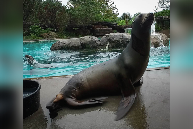 Photo Credit: (Pittsburgh Zoo & PPG Aquarium)