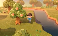 Review: Animal Crossing – New Horizons