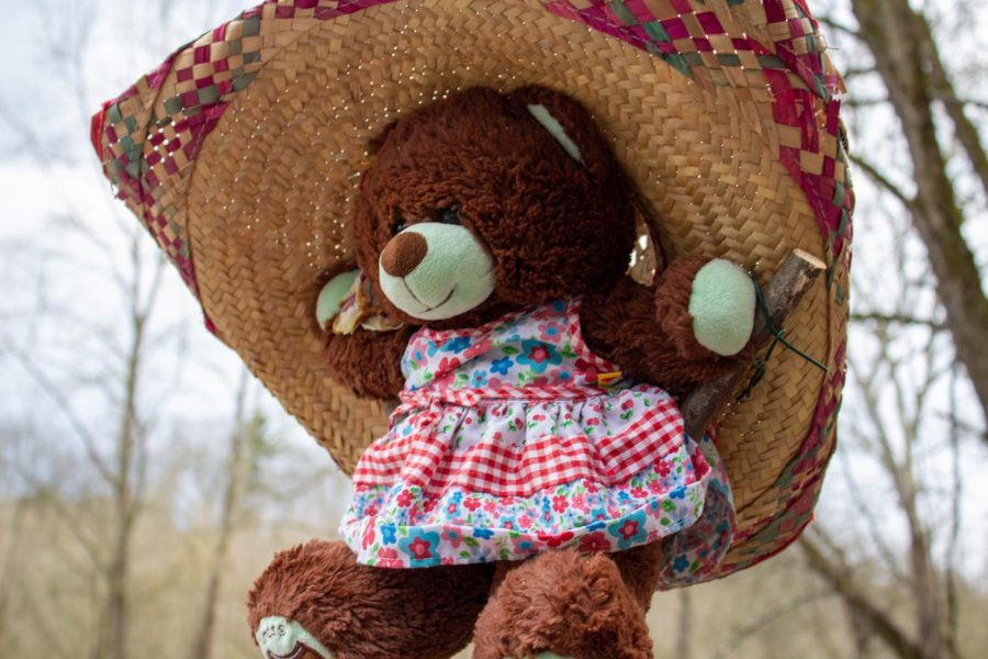While a bit overcast, this bear wears her sun hat to keep in the shade. Independence, PA. April 19, 2020. RMU Sentry Media/Garret Roberts
