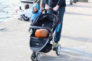Pumpkin in a Stroller